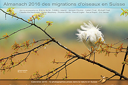 Almanach des migrations