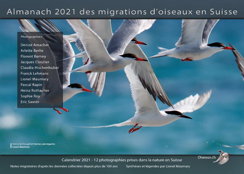 Calendrier 2021 Almanach Oiseaux.ch